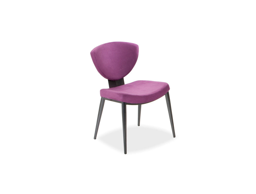Dining chairs from Elite modern style Bliss