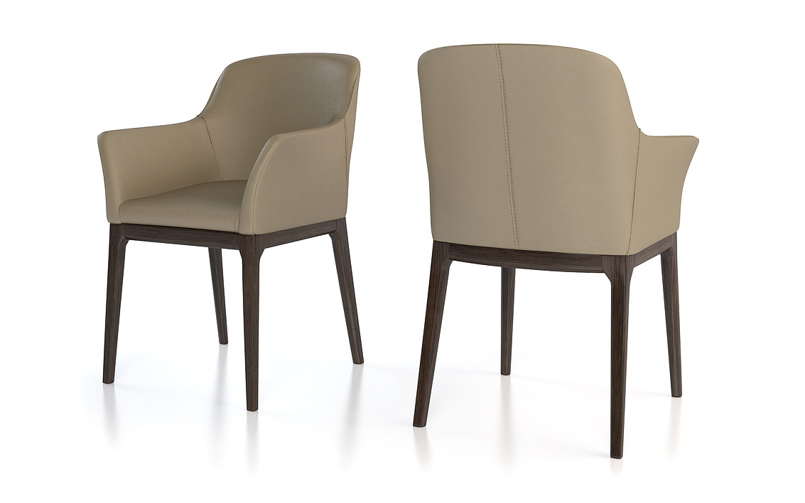 Dining chairs Colibri style Ann arm chair
